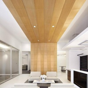 false-ceiling-design-in-hall-paach